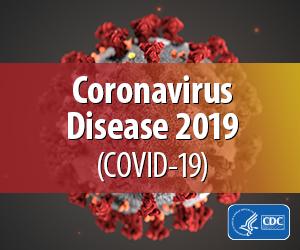 The Coronavirus Preparedness Calculator