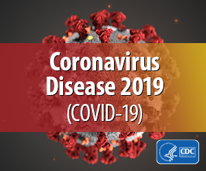 The Coronavirus Preparedness Calculator